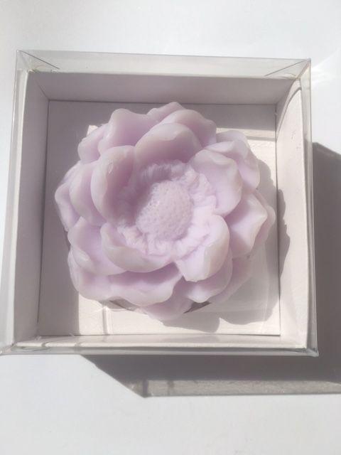 Sapun magnolija