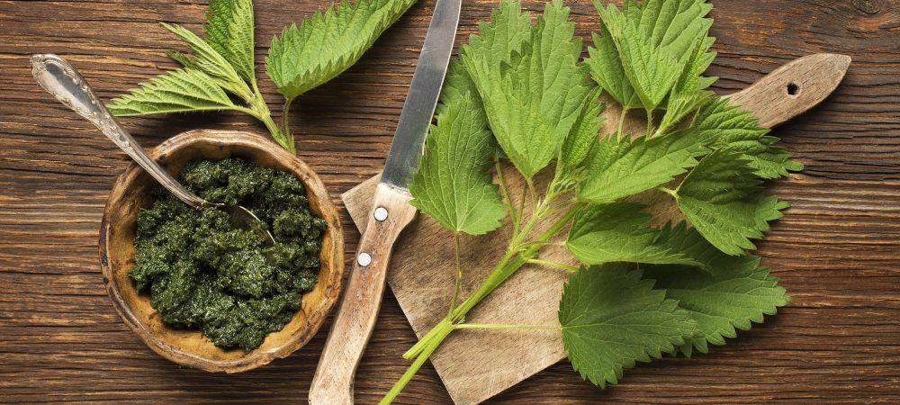 čaj od koprive za detoksikaciju organizma